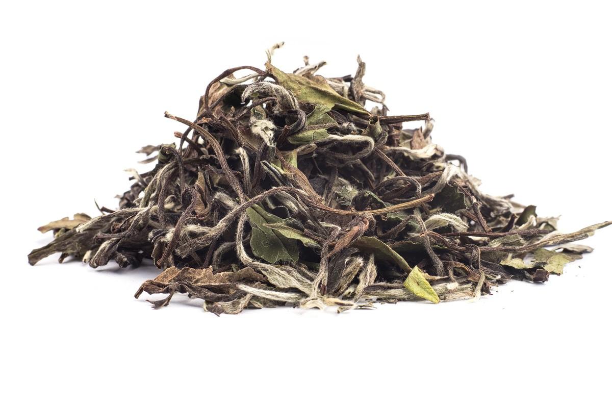 FUJIAN WHITE PEONY - biely čaj, 1000g